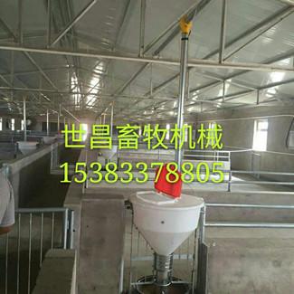 猪场自动化喂猪设备养殖自动化料线
