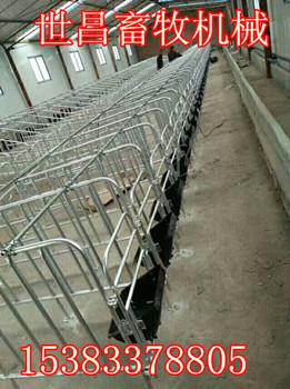 猪场定位栏