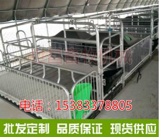 养猪场分娩同乐城国际母猪同乐城国际